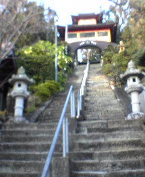 #25 Shinshou-ji 津照寺