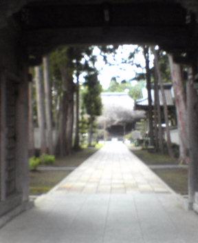 #29 Kokubun-ji 国分寺
