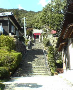 #41 Ryukou-ji 龍光寺