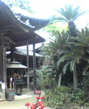 #46 Joururi-ji 浄瑠璃寺