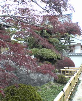 #48 Sairin-ji 西林寺
