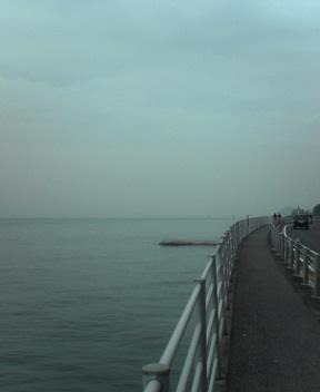 Up the Coast