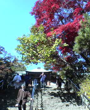 #82 Negoro-ji