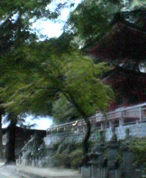 #85 Yakuri-ji