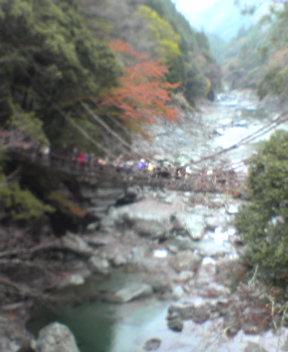 Vine Bridge in Iya