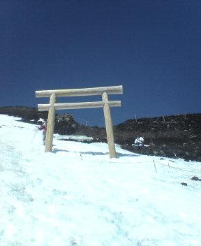 Tori Gate Near 9