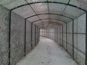 090110_snowtunnel