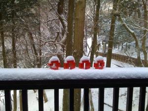 090112_snow2009